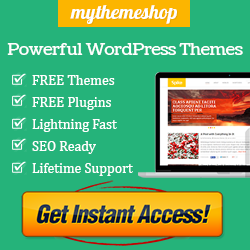 Worpress-Theme