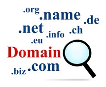 Domain Suche